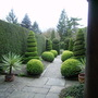 York_gate_garden_april_2007_00048