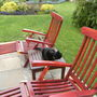 Steamer_chairs