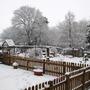Snowy Picket (Winter 08)