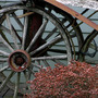 Wagon_wheels2
