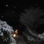 Snowing last night (Fri)