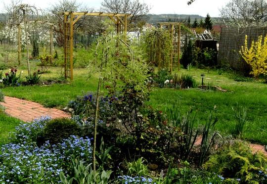 General view of top garden