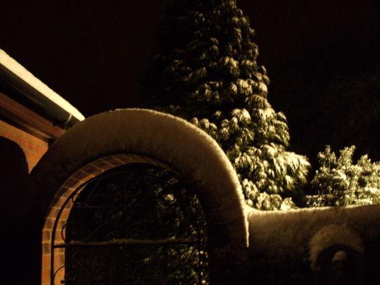 Garden gate ...