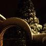 Garden_arch