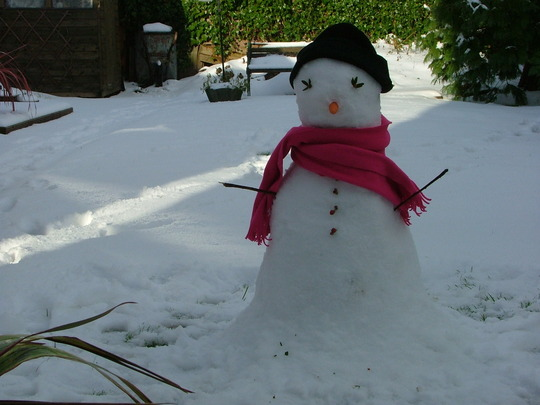 snowman for hywel