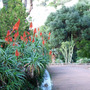 Alameda_Gardens_1.jpg