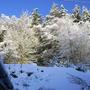 More_winter_001