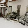 Front border in the snow