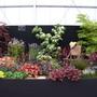 gardeners world 2007