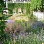 Chelsea_2008_F_Mason_garden.jpg