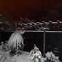 Jan_Snow_2010_006.jpg