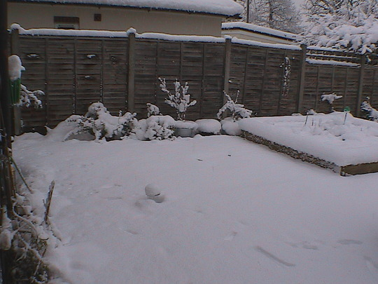 back_garden_-_looking_left.jpg