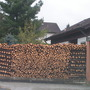 Logpile in Bavaria for Terratoonie