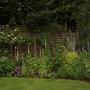 My garden in May