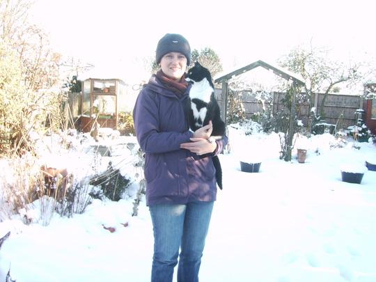 We've got snow - yippee! SEE BLOG! (Felix domesticus 'Varigatus')