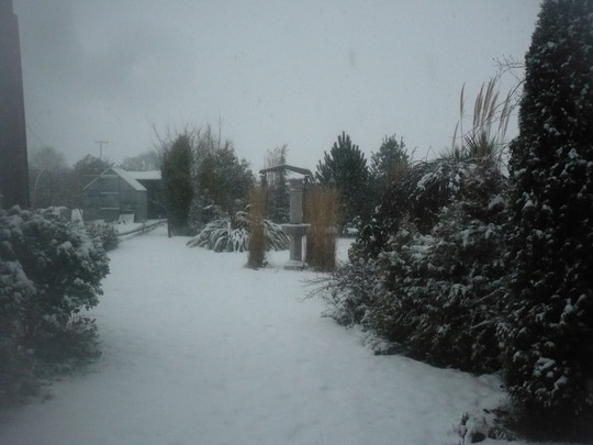 OOh Snowing Again..Its Boring now