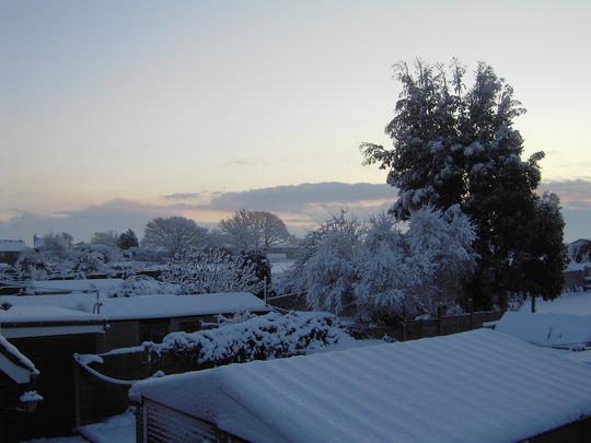 january 8th 2010