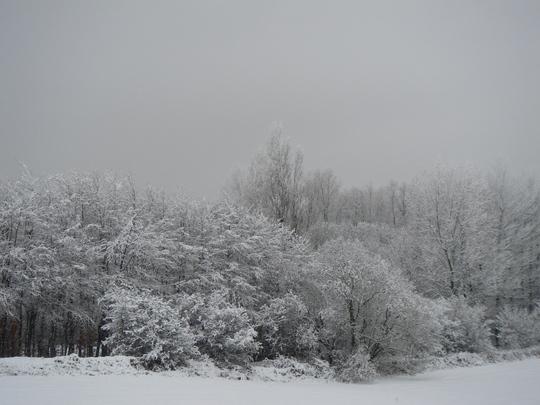 It's the snow!