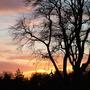 Foxhollow sunset