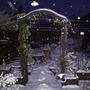 Snowgardenyes