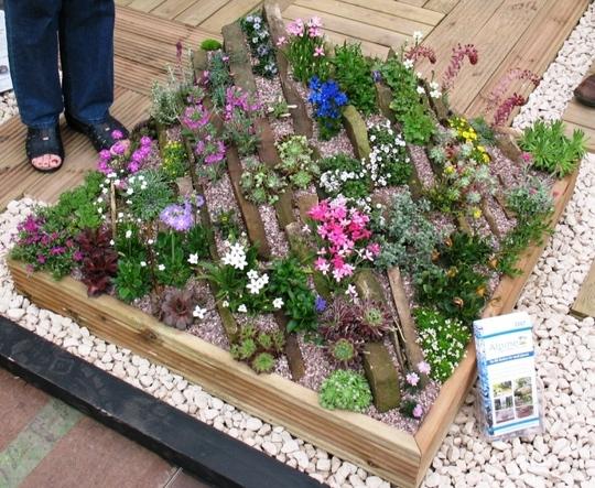 A Crevice Garden Harrogate 2007 Grows On You