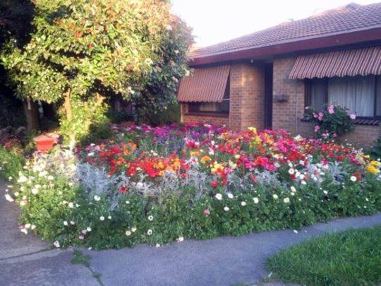 A view across the 2009 garden