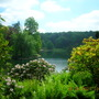 View at Stourhead.jpg