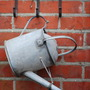Watering can mine for TT.
