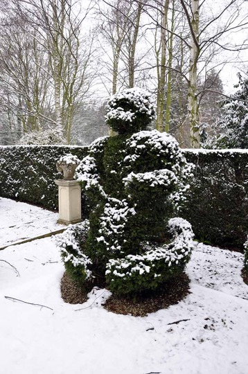 Winter topiary