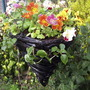 "Conical ""Witch Hat"" planter with Mimulus ""Magic Rainbow"" and trailing Bizzy Lizzy ""Spellbound"""