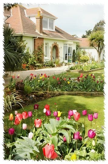 Our garden April 2008