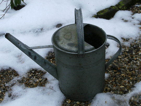 Watering can no 1 .. for TT