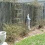 Front Garden - April 2008