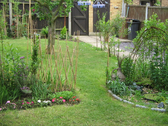 living willow creations in my small garden