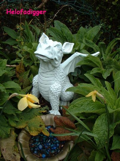 My garden dragon