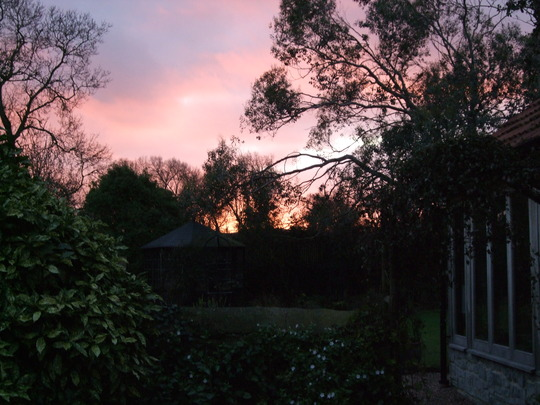 Sunset this evening at 4.50 p.m. across the garden.