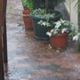 The wet season downunder: The courtyard is a lake and the rain is falling so heavily it creates a mist!