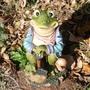 Gardening_Frog.jpg