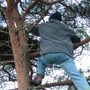 Broom Hunting 2