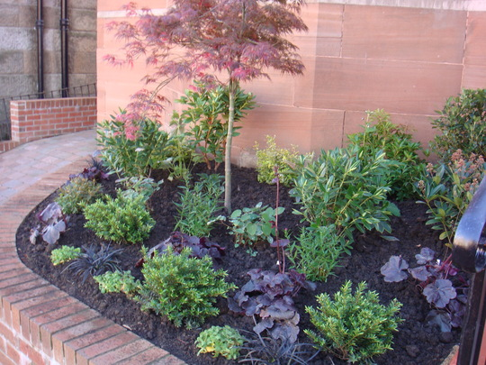A small newly planted front bed