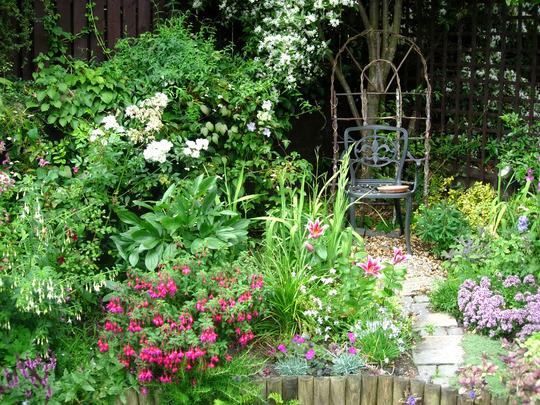 memories of my first garden