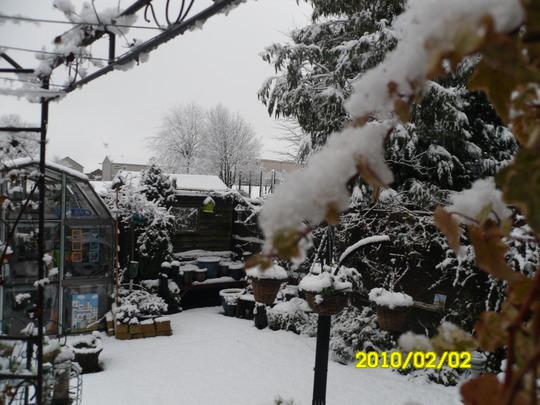 snowing again!!!