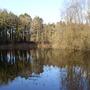 Donadea_forest_5