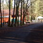Cafe at Donadea Forest