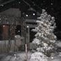 My_home_in_winter