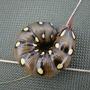 Bedstraw Hawkmoth caterpillar