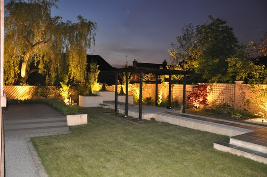 A modern garden at night