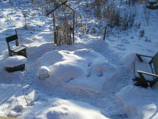 Garden in Alaska Feb 17