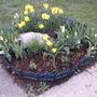 2008_04_23_rock_garden_bulb_fest_2_