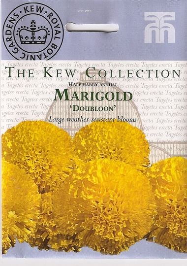 "Marigold ""Doubloon"""